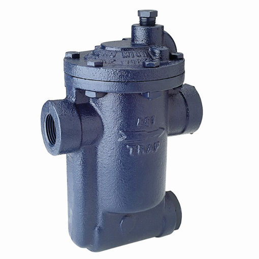 Picture of Steam Trap,Armstrong,Inverted bucket,881,DN20mm, 250psi operating pressure,#38 orifice ,screwed BSP female x female,cast iron